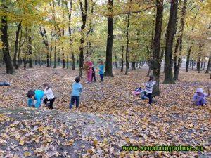 Mare acțiune la groapa cu frunze
